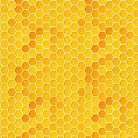 Adhesive  #219 Honeycomb