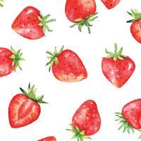 Adhesive  #258 Strawberry