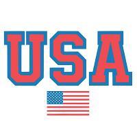 USA Flag Bold