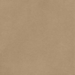 "American Crafts Smooth Cardstock - Caramel 12"" x 12"" Sheet"