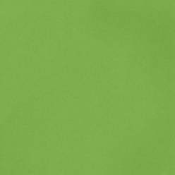 """American Crafts Smooth Cardstock - Grass 12"""" x 12"""" Sheet"""