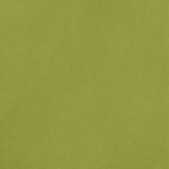 "American Crafts Smooth Cardstock - Leaf 12"" x 12"" Sheet"