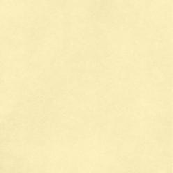 "American Crafts Smooth Cardstock - Vanilla 12"" x 12"" Sheet"